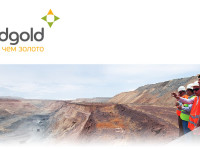 Гвинаский проект обойдется золотодобытчику Nordgold в $366 млн
