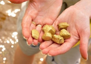 Поговорим о том, где можно найти золотые залежи