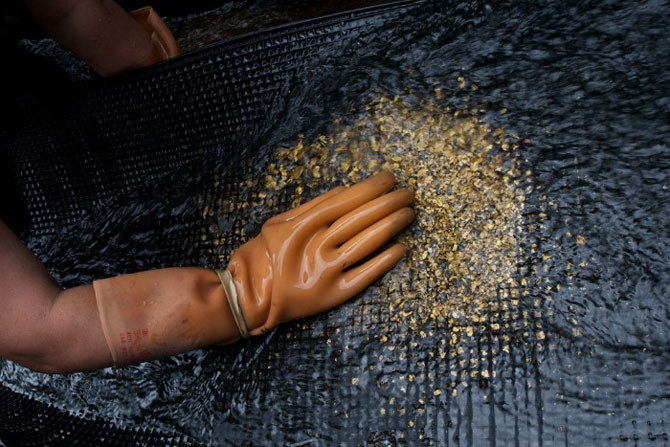 Золотодобыча в воде